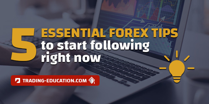 5 Golden Forex Tips for Newbies