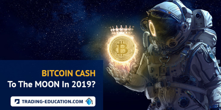 Bitcoin Cash To The Moon In 2019?