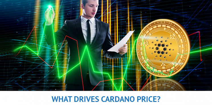 What Will Drive The Cardano Price In 2021?